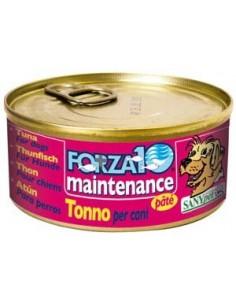 Forza10 Dog Maintenance...