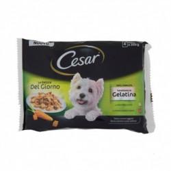 Cesar Delizie del Giorno Multipack Selezione in Gelatina Pollo e Carote - Manzo e Verdure 4x100 Gr
